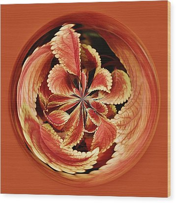 Leaves Orb Wood Print by Paulette Thomas
