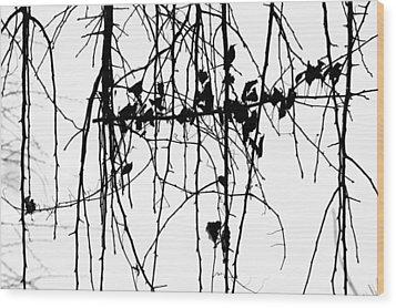 Leaves Wood Print by Susie DeZarn