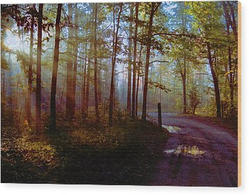 Wood Print featuring the photograph Leaving... by Daniel Thompson