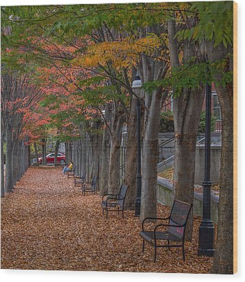 Wood Print featuring the photograph Leaving by Glenn DiPaola