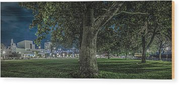 Leclaire Park Wood Print by Ray Congrove
