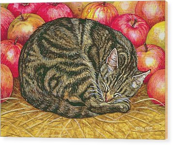 Left Hand Apple Cat Wood Print by Ditz