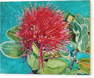 Lehua Blossom Wood Print by Terry Holliday