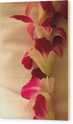 Wood Print featuring the photograph Lei  by Cathy Donohoue