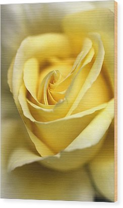 Wood Print featuring the photograph Lemon Lush by Joy Watson