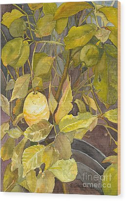 Lemon Tree Wood Print by Sandy Linden