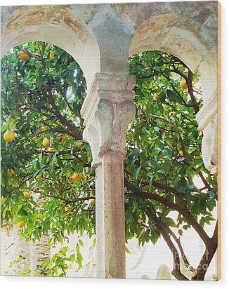 Lemon Tree Very Pretty Wood Print by Ann Johndro-Collins
