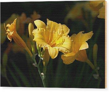 Lemon Yellow Daylilies Wood Print by Rona Black