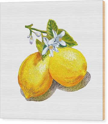 Wood Print featuring the painting Lemons And Blossoms by Irina Sztukowski