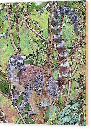 Lemur Sketch Wood Print by Dan Dooley
