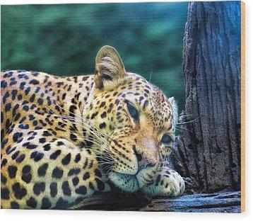 Wood Print featuring the photograph Leopard 1 by Dawn Eshelman