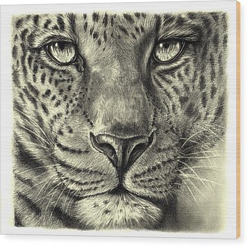 Wood Print featuring the drawing Leopard by Heidi Kriel