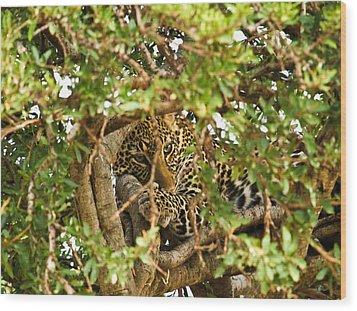Leopard On Tree Wood Print by Kongsak Sumano
