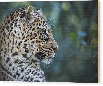 Leopard's Look Wood Print by Jaki Miller