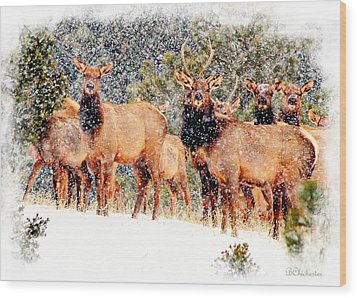 Let It Snow - Barbara Chichester Wood Print by Barbara Chichester