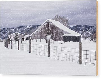 Wood Print featuring the photograph Let It Snow by Kristal Kraft