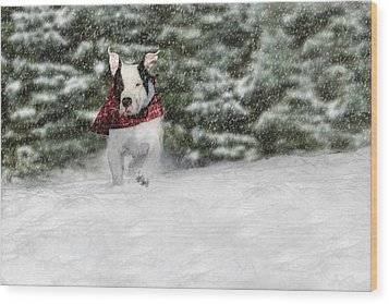Snow Day Wood Print by Shelley Neff