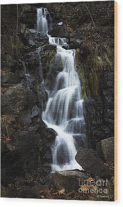 Wood Print featuring the photograph Let No Tears Fall by Nancy Dempsey