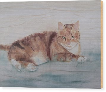Let Sleeping Cats Lie Wood Print