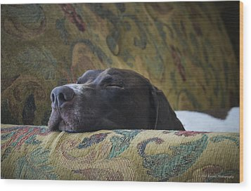 Wood Print featuring the photograph Let Sleeping Dogs Lie. by Phil Abrams