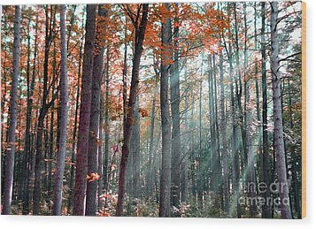 Let There Be Light Wood Print by Terri Gostola