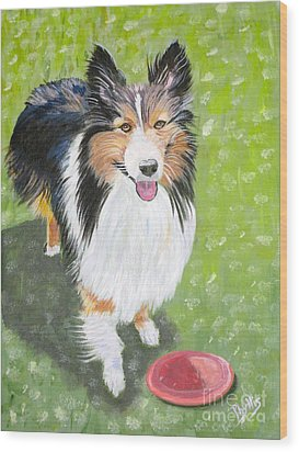 Let Us Play  Border Collie Wood Print by Phyllis Kaltenbach