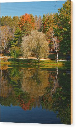Letchworth Autumn Reflections Wood Print
