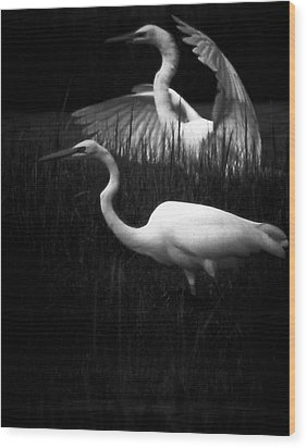Let's Just Wing It Wood Print by Robert McCubbin