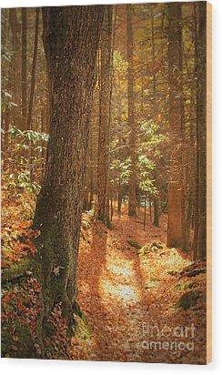 Let's Take A Walk Wood Print by Geraldine DeBoer