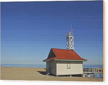 Leuty Lifeguard Station In Toronto Wood Print by Elena Elisseeva