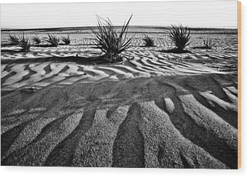 Wood Print featuring the photograph Level 9 by Ryan Weddle