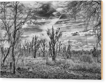 Wood Print featuring the photograph Levy Lake by Howard Salmon
