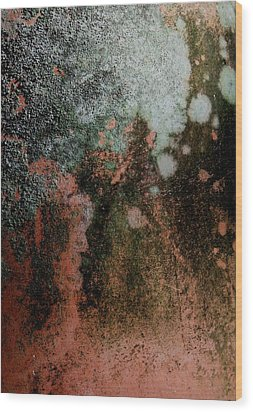 Lichen Abstract 2 Wood Print by Denise Clark
