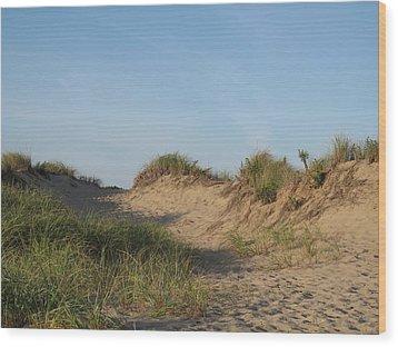 Lieutenant Island Dunes Wood Print