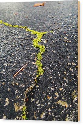 Life Between The Cracks Wood Print by Mike Lee