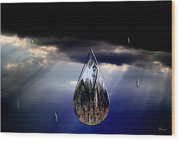 Life Drop Wood Print by Andrea Lawrence