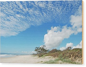 Wood Print featuring the photograph Life Is A Beach by Ankya Klay