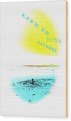 Life Is Your Sandbox Wood Print by Brian D Meredith