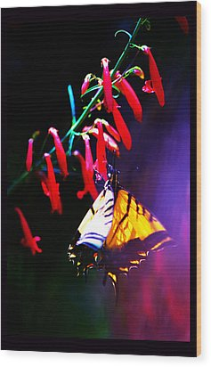 Life Of Butterfly Wood Print by Susanne Still