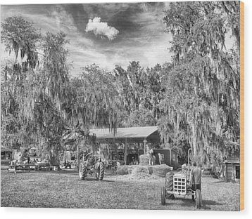 Wood Print featuring the photograph Life On The Farm by Howard Salmon