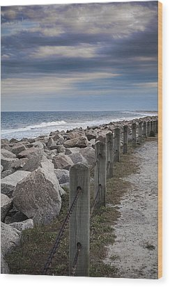 Life On The Rocks Wood Print by Chris Brehmer Photography