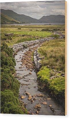 Life To The Glen Wood Print by Tim Bryan