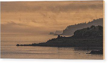 Wood Print featuring the photograph Lifting Fog At Sunrise On Campobello Coastline by Marty Saccone
