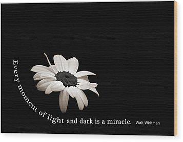 Light And Dark Inspirational Wood Print