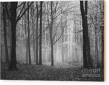 Light And Shadow Wood Print by Anne Gilbert