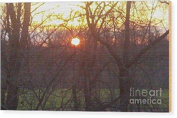 Light At Sunrise Wood Print