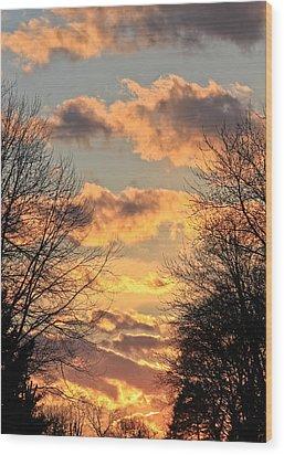 Light Catcher Wood Print