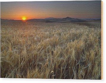 Light Fields Wood Print by Guido Montanes Castillo
