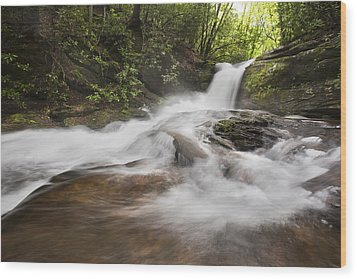 Light In The Forest Wood Print by Debra and Dave Vanderlaan