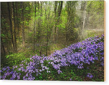 Light Of The Forest Fairies Wood Print by Debra and Dave Vanderlaan